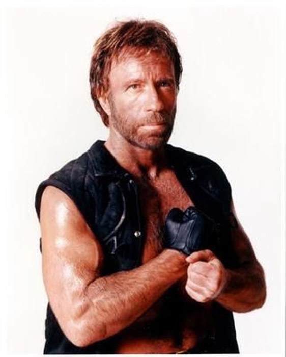 Today is the Primary in South Carolina. Last week Chuck Norris gave his ...