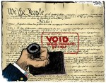 constitution, Void where prohibited by Obama